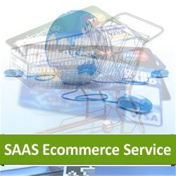 Hosted Ecommerce Solution Based on SAAS Platform