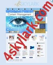 ecommerce website design connecticut