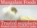 Peeled Garlic Manufacturer In India