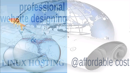 Professional Designing & Web Hosting On LINUX